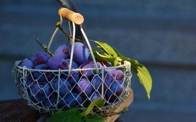 Aliments venotònics per alleujar les varius