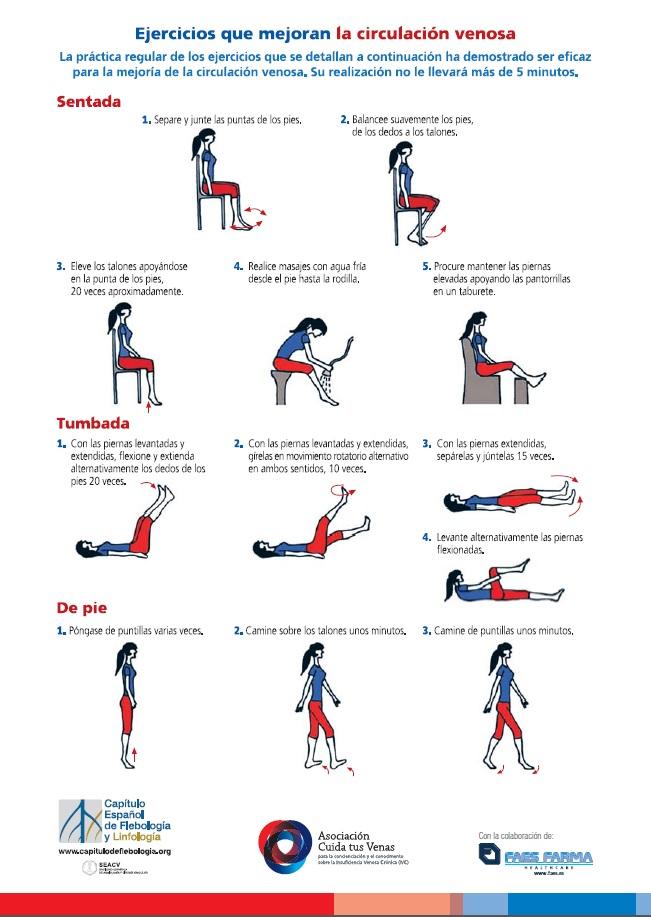 Cómo favorecer la circulación venosa en las piernas